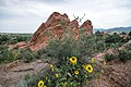 Garden of the Gods (36654589084).jpg