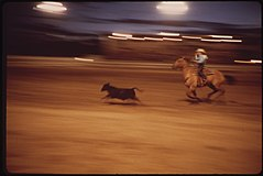 Garfield County Fair. Nighttime Rodeo for 4-H Club Boys, 09-1973 (3815034993).jpg
