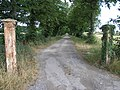 Gateposts and Avenue - geograph.org.uk - 202213.jpg