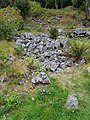 Geiranger-Fjord 31082017 34.jpg