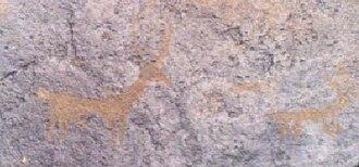 Gamigaya Petroglyphs - Deer