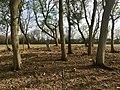 George Hott Farm Cemetery.jpg