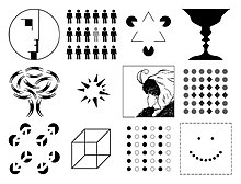 asch cognition essay in legacy psychology social solomon