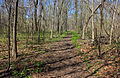 Gfp-missouri-st-louis-trail.jpg