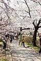 Ginkakuji 2009-04-08 (3634776286).jpg