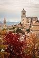 Girona - Catedral de Girona 09 2016-11-13.jpg