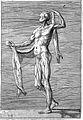 Giulio Bonasone's figures illustrating human anatomy Wellcome L0018656.jpg
