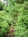 Glen Asup Stream - geograph.org.uk - 233254.jpg