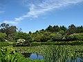 Glenwhan garden (32527931123).jpg