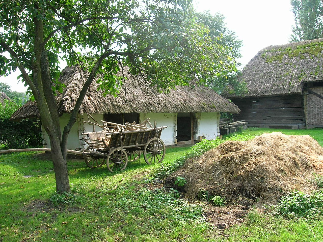 File gocsej village house backyard wikimedia commons for Bangladesh village house design