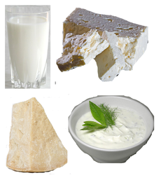 Good Dairy Sources.png