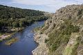 Gorges de la Loire (Grangent).jpg