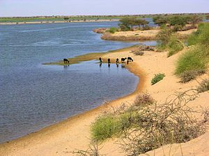 The Niger River at Gourma Rharous