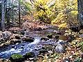 Grant's Creek (Tay River) at Allan's Mill, October, 2009 (5021219090).jpg