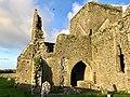Graveyard, Hore Abbey, Caiseal, Éire - 32711752018.jpg