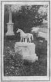 Graveyard by Augustine Folsom cdv.png