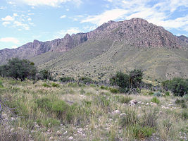 Guadalupe Mountains National Park P1012846.jpg