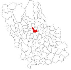 Vị trí của Gura Vitioarei
