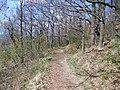 """Gustav-Freytag-Wanderweg -Rund um """"Die drei Gleichen"""" - panoramio (1).jpg"""