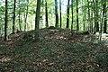 Hügelgrab Kronstorf.JPG