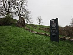 Hadrian's Wall at Hare Hill - geograph.org.uk - 2886878.jpg