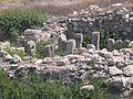 Haifa-Tel-Shikmona-903.jpg