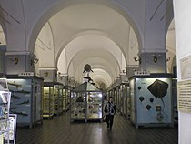 Hall in Museum of Zoology (Saint Petersburg)0.jpg
