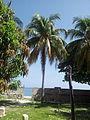 Hatian Beach.jpg