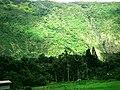 Hawaii Big Island Kona Hilo 226 (7025136483).jpg