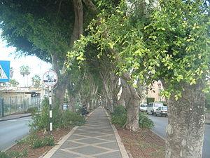 Kiryat Ata - HaTzionut Boulevard