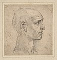 Head of a Man in Profile to Right MET DP810981.jpg