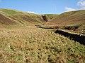 Headwaters of the Tweeddale Burn - geograph.org.uk - 168923.jpg