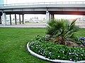 Heart of Sharjah - panoramio (2).jpg