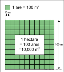 Hectare.png