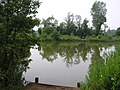 Henlow Bridge Lakes - 26th June 2009 - panoramio.jpg