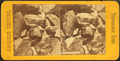 Highland Glen, Tennessee, from Robert N. Dennis collection of stereoscopic views.png