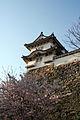 Himeji castle April 19.jpg