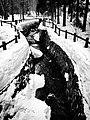 Hokkaido Jingu, Hokkaido Shrine, Sapporo, Hokkaido, Japan, 北海道神宮, 札幌, 北海道, 日本, ほっかいどうじんぐう, さっぽろし, ほっかいどう, にっぽん, にほん (16578023760).jpg