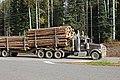 Holzlaster BC IMG 6140a.jpg