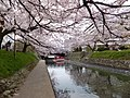 Honmachi, Toyama, Toyama Prefecture 930-0029, Japan - panoramio (6).jpg