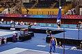HorizontalBar-YOGArtisticGymnastics-BishanSportsHall-Singapore-20100816-02a.jpg
