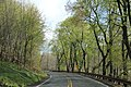 Horseshoe Curve Region - panoramio (18).jpg