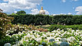 Hotel des Invalides from the garden of the Musée Rodin, Paris June 2011.jpg