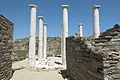 House Dionysus Delos 102283.jpg