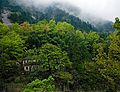 Huangshan, China (YELLOW MOUNTAIN-LANDSCAPE) III (1017416323).jpg