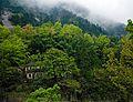 Huangshan, China (YELLOW MOUNTAIN-LANDSCAPE) III (1017416323).jpg