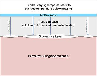 Ice lens -  Ice Lens formation within tundra.