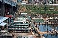 Ichigaya Fish Center in 1967, Ichigaya, Tokyo (1967-05-05 by Roger W).jpg