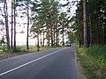 Iela - panoramio (2).jpg