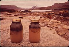 In October, 1972, a Pipeline of the Texas - New Mexico Pipeline Company Burst, Releasing 285,000 Gallons of Crude Oil Into the San Juan River, 10-1972 (3814969408).jpg
